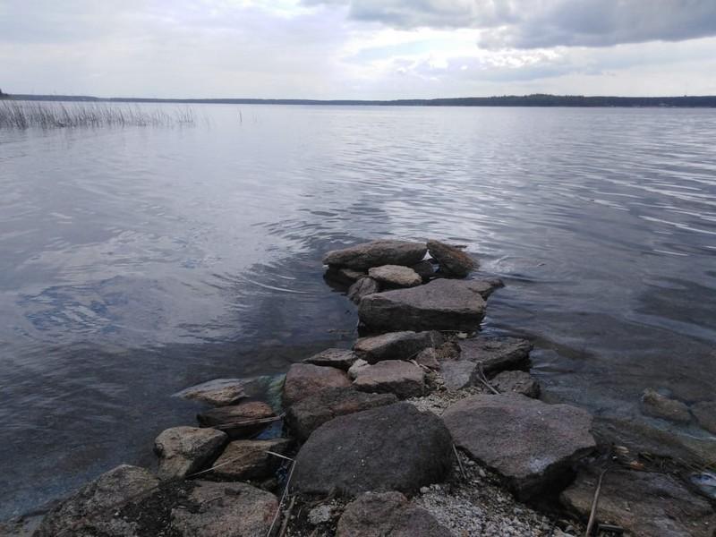 Озерские экологи и волонтёры присоединились к Всероссийской акции «Вода России»