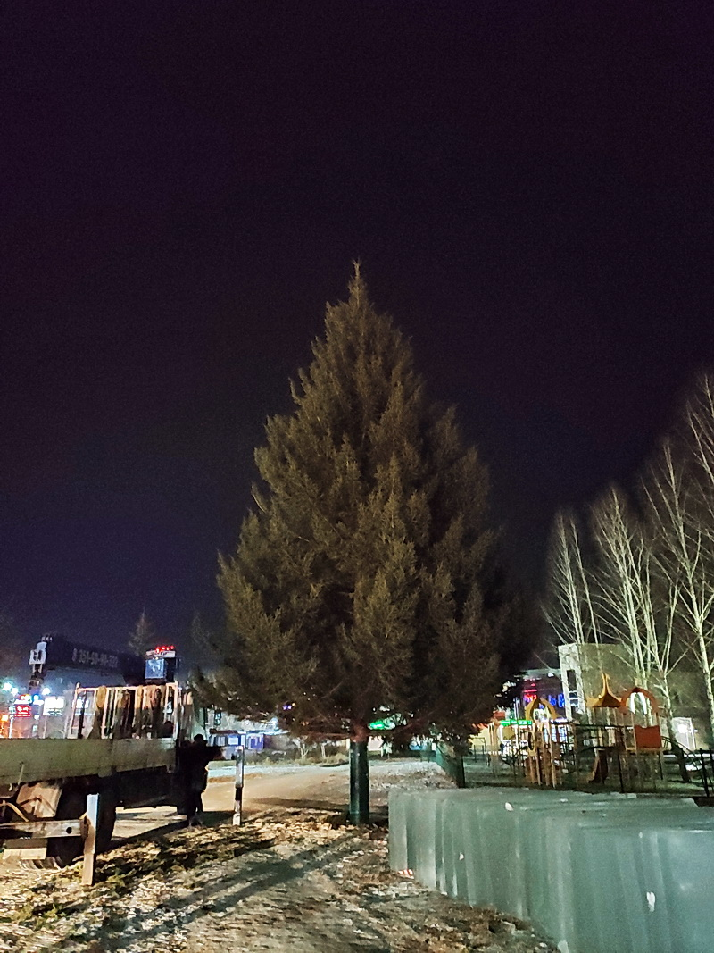 В Озерске установили главную новогоднюю елку
